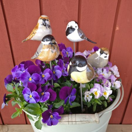 Blompinnefåglar